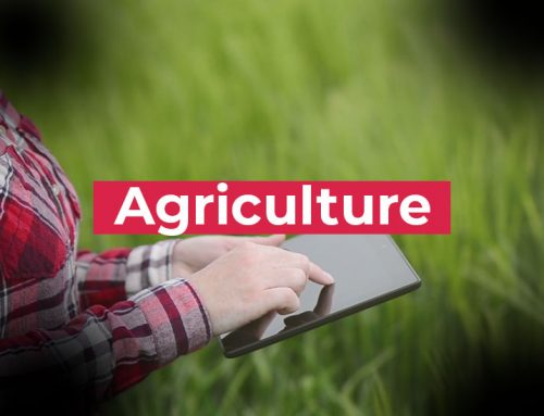 5G technology at the service of intelligent agriculture